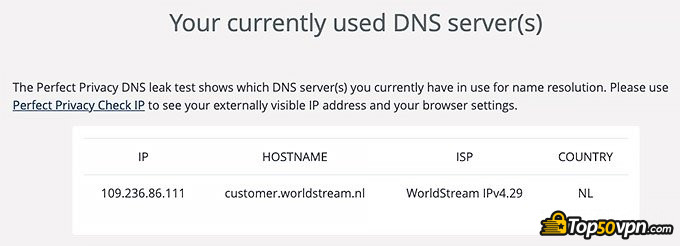 Surfshark review: DNS leak test.