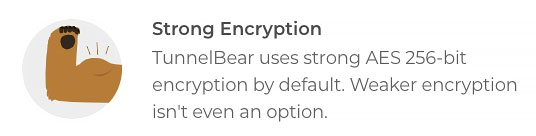 TunnelBear review: data encryption.
